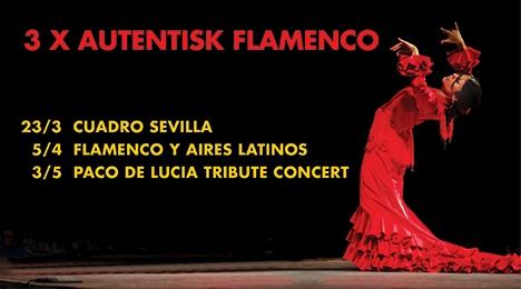 3 x Flamenco