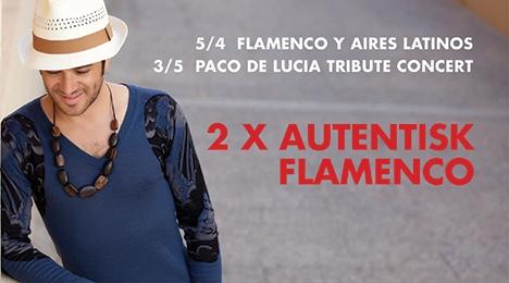 2 x Flamenco