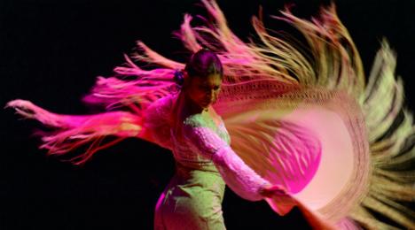 Flamenco de Sevilla